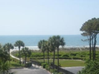 Ocean Views, 1 Bedroom, Close to Coligny, Hilton Head