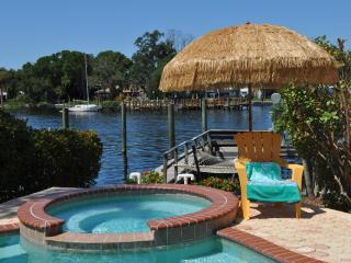5 Bedroom Luxury Waterfront Home in Tarpon Springs