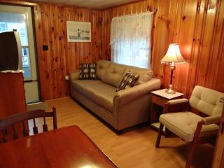 The 'Aimee Up' Cottage! Living room w/ new couch.