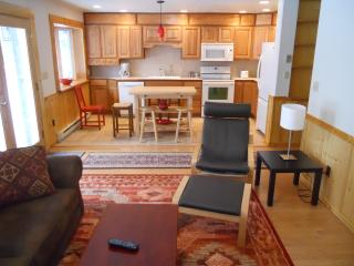 Cozy Lake Placid Apartment rental