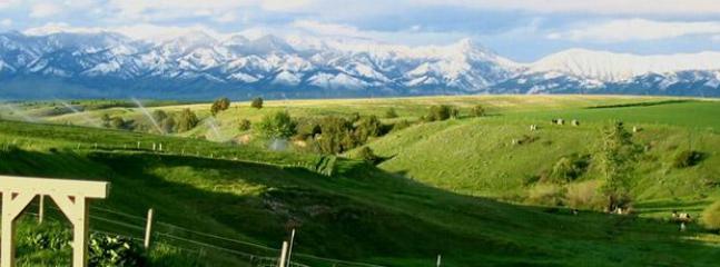 Gorgeous meadow and bridger mountain views!