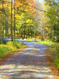 Long private driveway - Stowe Meadows Lodge