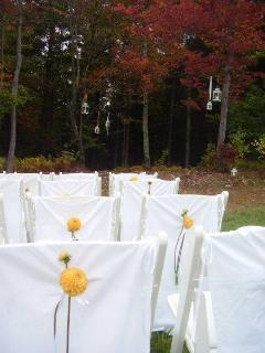 Wedding Reception - Stowe Meadows is a gorgeous
