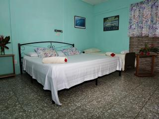 Cabina bedroom with king and single beds a/c and fan