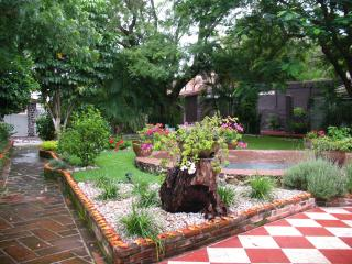 Lush Garden after the rain