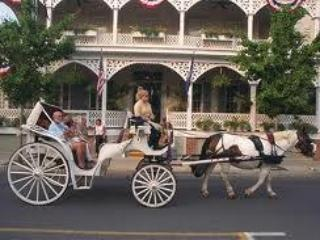 Horse and Buggy Rides directly out front of the The Holly Suite
