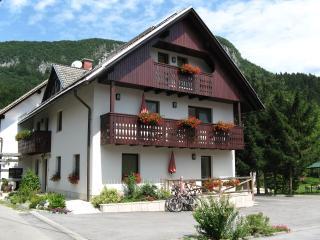 BOHINJ valley - NA VASI Apartments, Bohinjska Bistrica