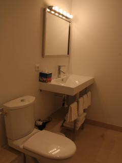 Bathroom in a coach house duplex