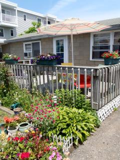 The 'Lynn Ann' Cottage with a great deck off the side!