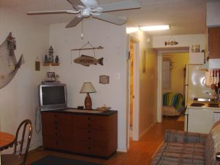 Awesome Condo 1 Bedroom, Wildwood