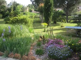 View on the garden from your terrace.
