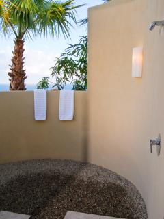 Outdoor Shower in Master