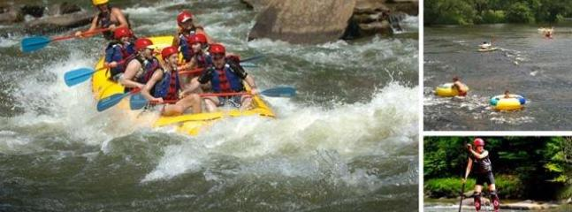http://www.blueridgemountains.com/whitewater_rafting.html
