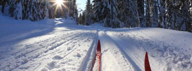 Cross-country skiing close by