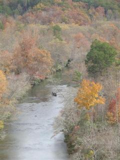 Fall foliage on Nottley River