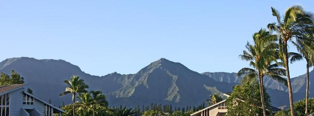 Mountain view from master bedroom lanai