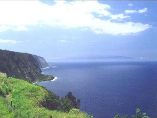 Breathtaking, Spectacular, Ocean Front..Cliffhouse, Kukuihaele