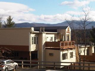 Skyview  - Sunny Comfortable Stowe Vermont  Condo