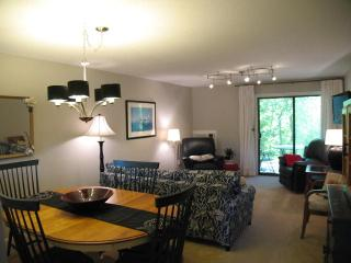 Ocean Edge Street Level with updated kitchen, pool passes (fees apply) - CH0424, Brewster