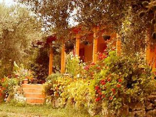 The Olive Farm - sea views- set in 400 olive trees