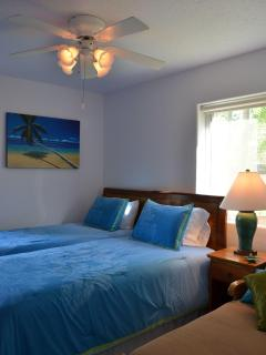 Fourth Bedroom, first floor.  Two twin beds and a chaise lounger.  Cable TV and DVD