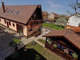 Ambient Villa 5*, Brasov