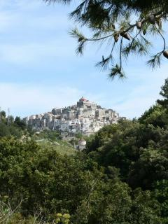 Vico del Gargano - our nearest town