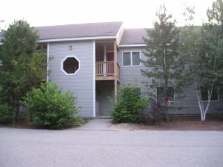 North Conway 3 bedroom condo close to mountains and rivers