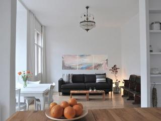 Charming, central and cozy 2 bedroom condo, Estambul