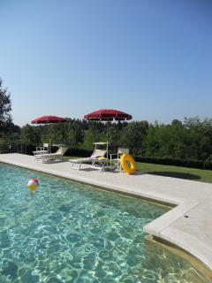 Enjoy the fantastic pool with your friends and family!