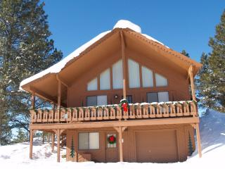 Mountain Chalet sleeps 10+, hot tub, fireplace, sledding hill, panoramic views
