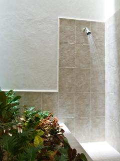 The guest bathroom features a shower adjacent to an indoor garden, lit by a skylight...