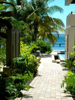 tropical garden walkways