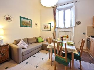 Ground Floor Apartment Rental in Florence, Italy