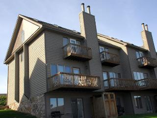 Captivating lakefront townhome on a ski in/ ski out location!, McHenry