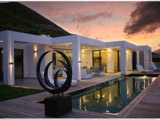 PEARL...WOW! Drop dead gorgeous new contemporary villa near Orient Bay