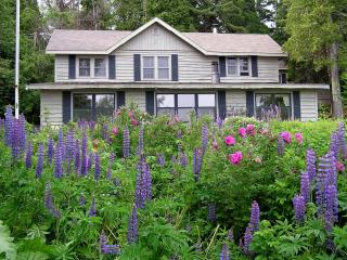 Lupine Lodge on Lake Superior, Two Harbors