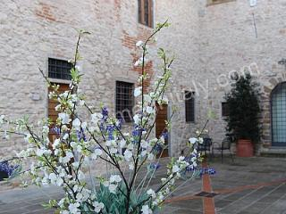 Casa Bonannia M, Grassina
