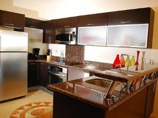 Stove, Oven, Refrigerator,Dishwasher, Microwave,Toaster, Coffee Maker, blender, pots/pans/dishes