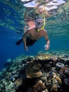 Snorkelling over shallow reef