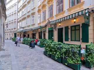 The Kurrentgasse, our building on the back