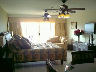 King-size bed, single sofa-bed, flatscreen HDTV...