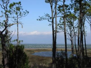 $899/wk Remaining Spring Weeks Panoramic Bayfront Home 1.5 Blocks to Gulf Beach, St. George Island
