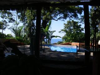 Pool features a shady cabana