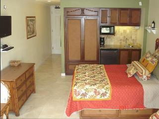 $84-$104-Oceanfront Resort/Oceanview Units244/256, Kapaa