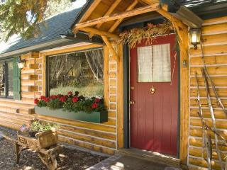 Enchanting Mountain Cabin Wooded Property w/ WiFi, Estes Park