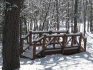 Enchanting Mountain Cabin Wooded Property w/ WiFi