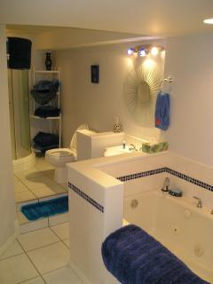 Jacuzzi Tub and Separate Shower