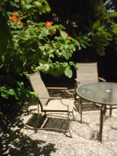 Tiny shady back garden