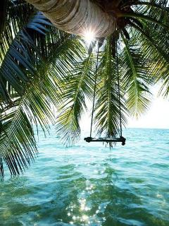 swing on the ocean~